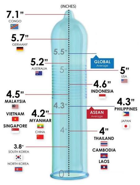 penis-size-chart.jpg