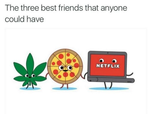 netflix-chill-best-buds-weedmemes.jpg